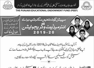 PEEF Special Quota Intermediate, Graduation Scholarship 2019-20 Form Download