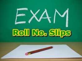 Faisalabad Board Inter Roll Number Slip 2020 1st Year, 2nd Year