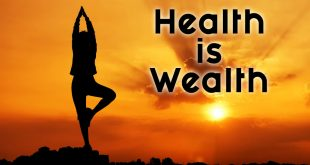 Health Is Wealth Essay In English For Class 10