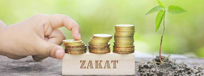 Zakat Nisab 2020 Pakistan State Bank Cash Gold