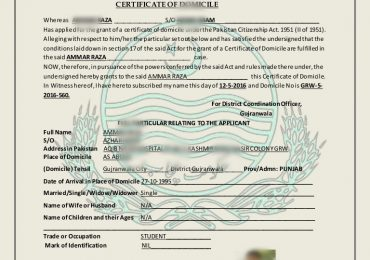 How To Apply For Domicile Certificate In Punjab Pakistan