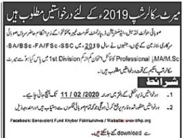 KPK Government Merit Scholarship 2020 Form Download