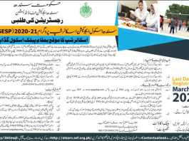 Sindh School Education Scholarship Program 2020-2021