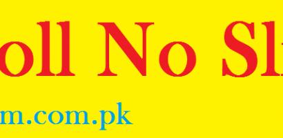 BISE Faisalabad Board 9th Class Roll No Slip 2021